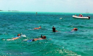 Our families snorkeling together